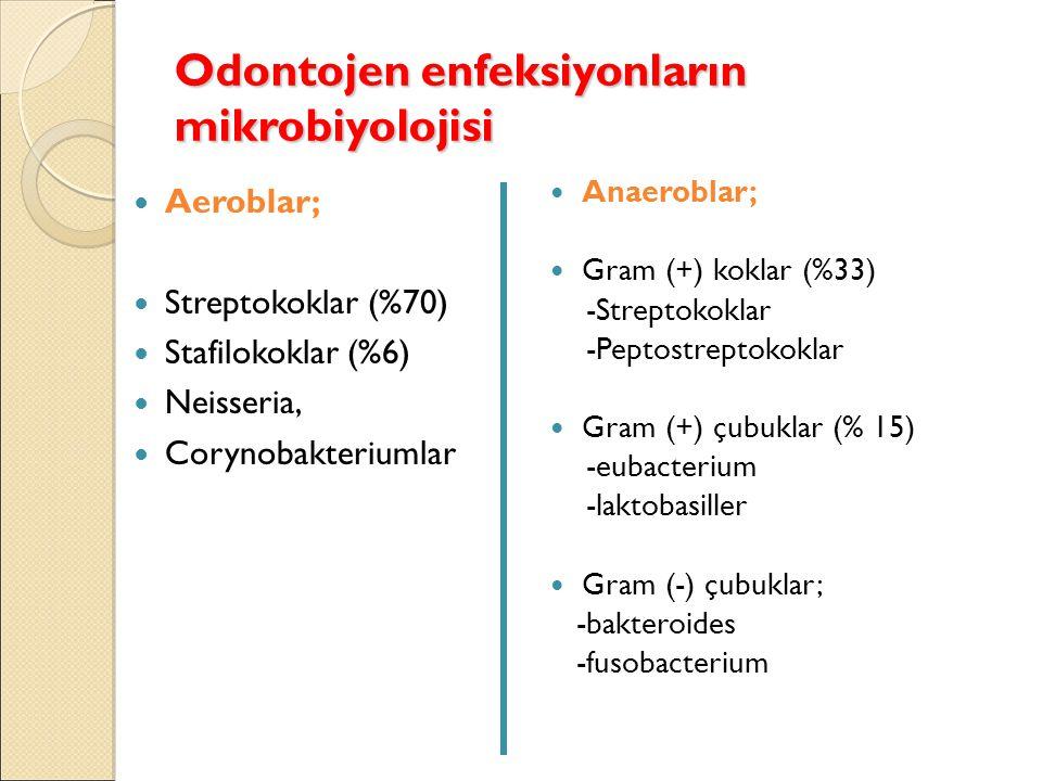 Odontojen enfeksiyonların mikrobiyolojisi