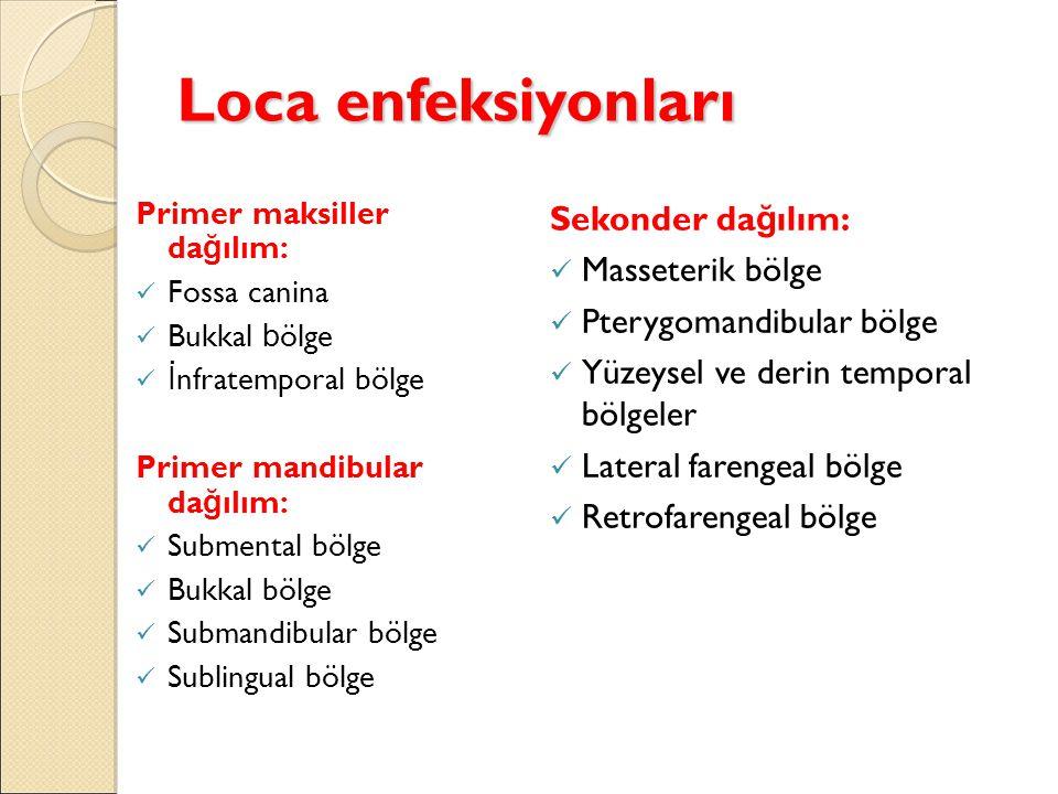 Loca enfeksiyonları Sekonder dağılım: Masseterik bölge