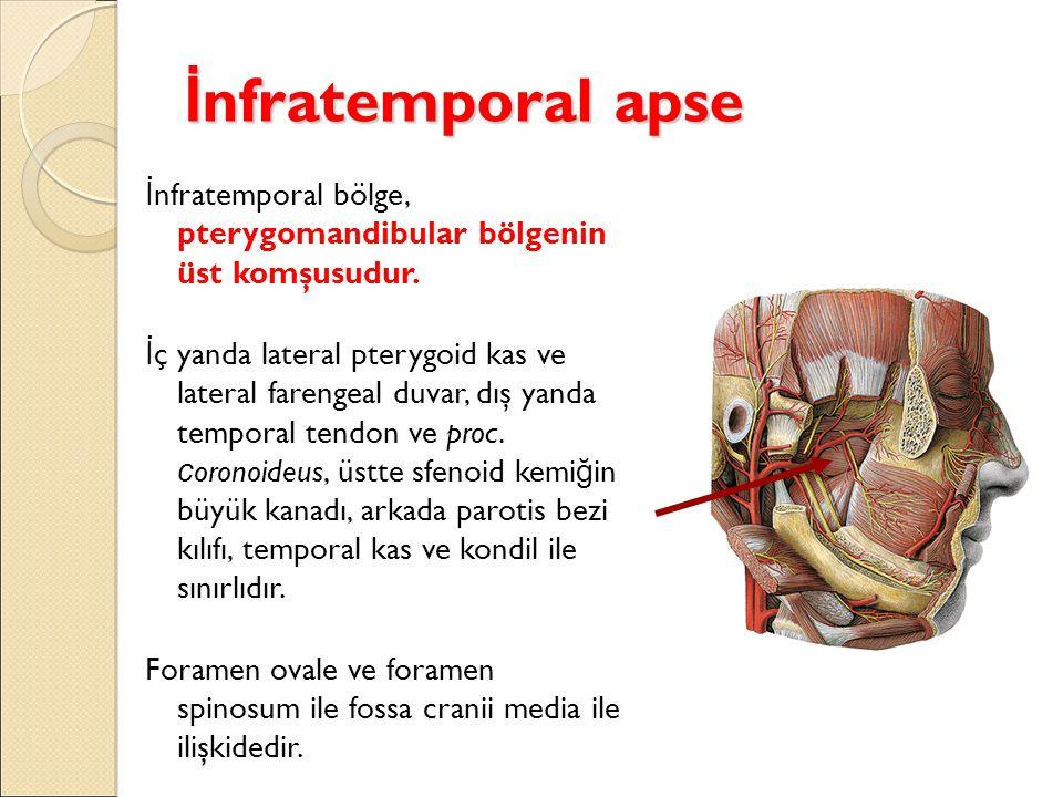 İnfratemporal apse