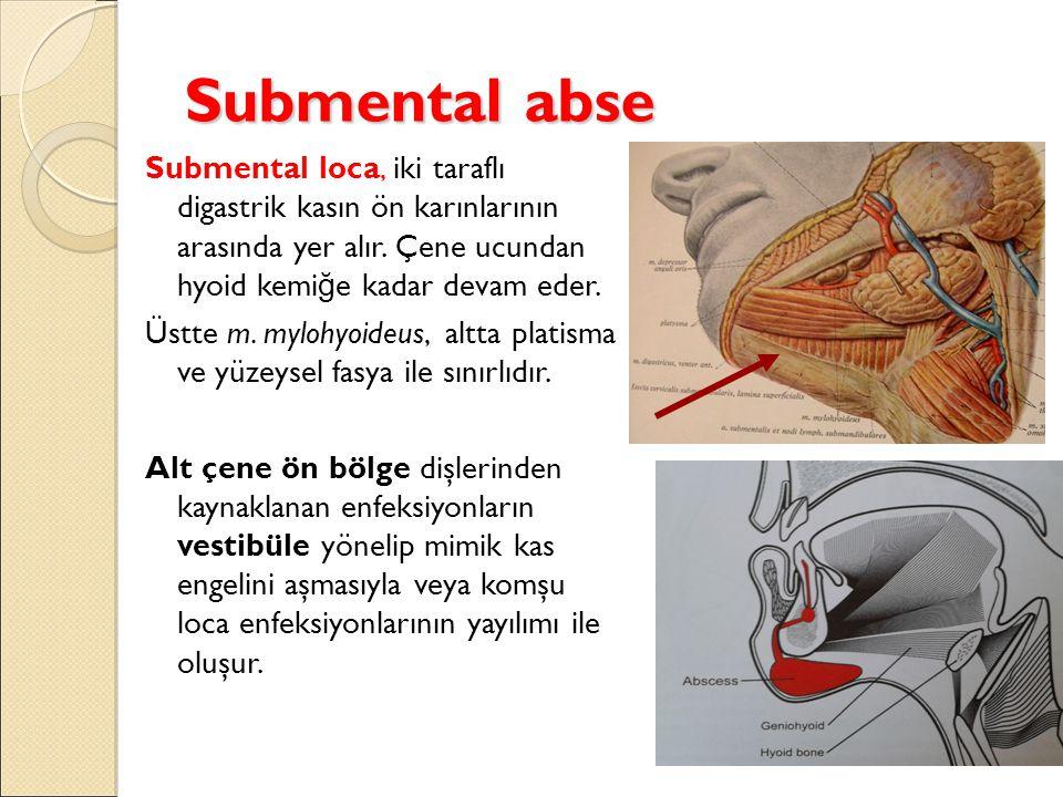 Submental abse Submental loca, iki taraflı digastrik kasın ön karınlarının arasında yer alır. Çene ucundan hyoid kemiğe kadar devam eder.
