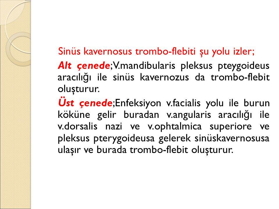 Sinüs kavernosus trombo-flebiti şu yolu izler; Alt çenede;V
