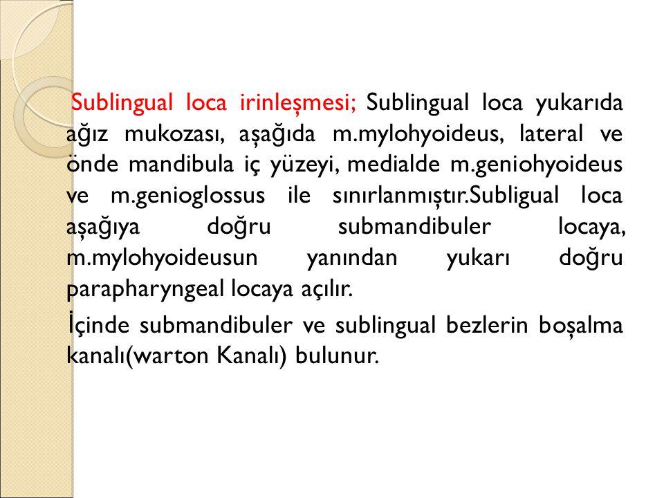 Sublingual loca irinleşmesi; Sublingual loca yukarıda ağız mukozası, aşağıda m.mylohyoideus, lateral ve önde mandibula iç yüzeyi, medialde m.geniohyoideus ve m.genioglossus ile sınırlanmıştır.Subligual loca aşağıya doğru submandibuler locaya, m.mylohyoideusun yanından yukarı doğru parapharyngeal locaya açılır.
