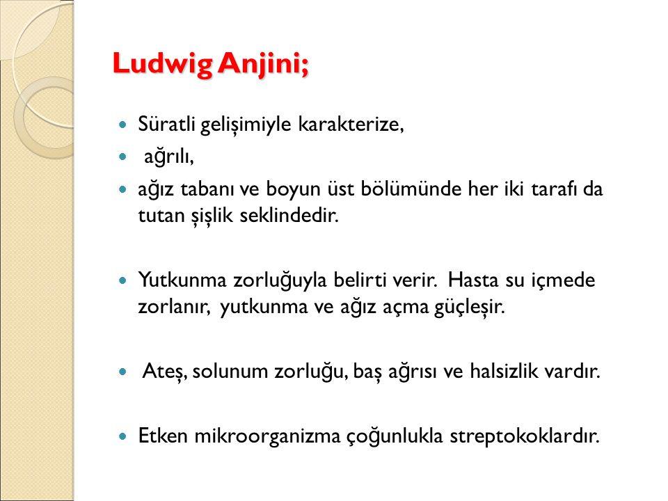 Ludwig Anjini; Süratli gelişimiyle karakterize, ağrılı,