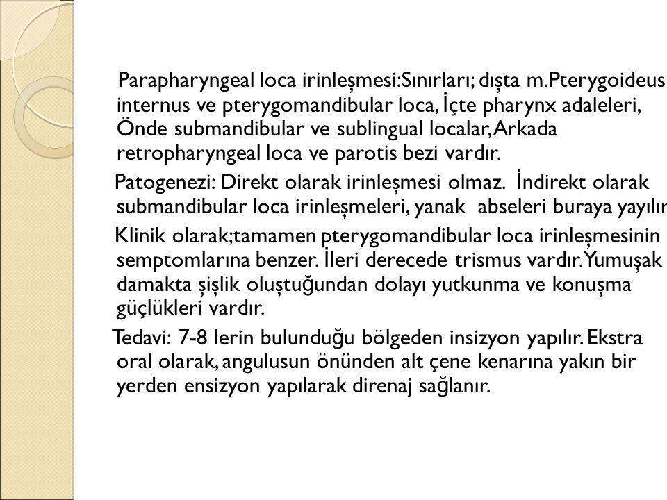 Parapharyngeal loca irinleşmesi:Sınırları; dışta m