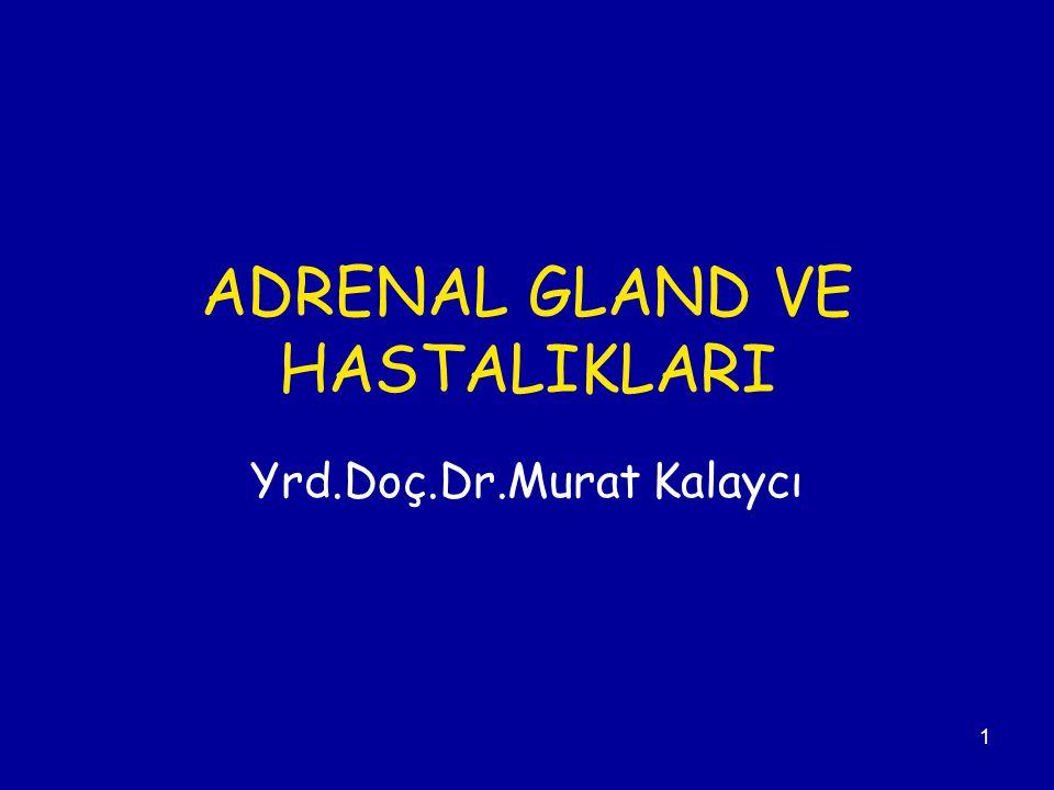ADRENAL GLAND VE HASTALIKLARI