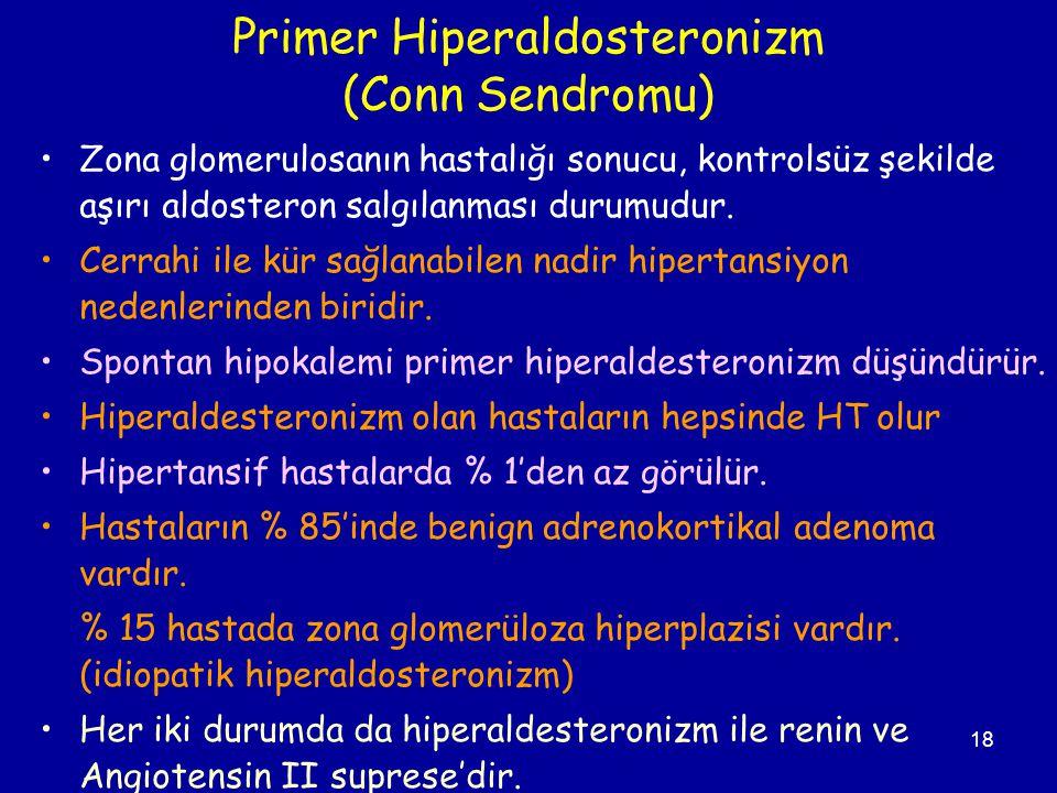 Primer Hiperaldosteronizm (Conn Sendromu)