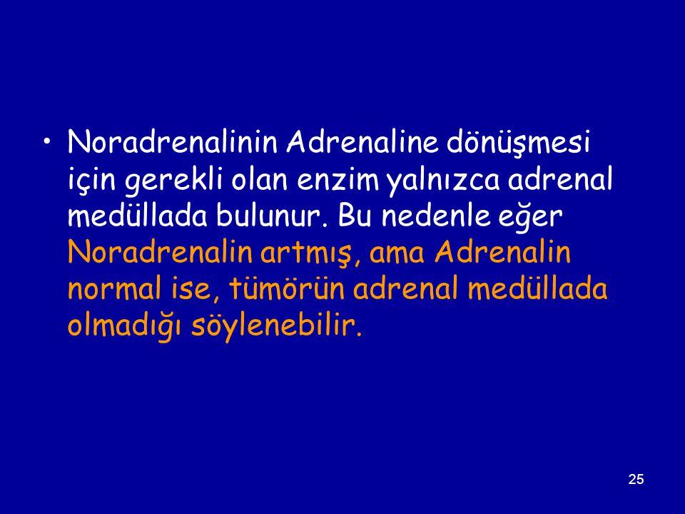 Noradrenalinin Adrenaline dönüşmesi için gerekli olan enzim yalnızca adrenal medüllada bulunur.