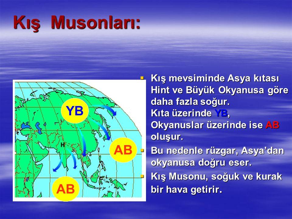 Kış Musonları: