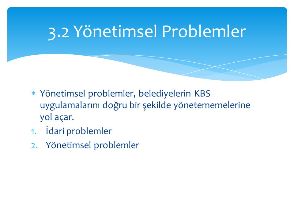3.2 Yönetimsel Problemler