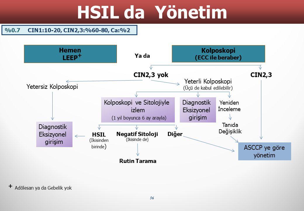 HSIL da Yönetim Hemen LEEP Kolposkopi CIN2,3 yok CIN2,3