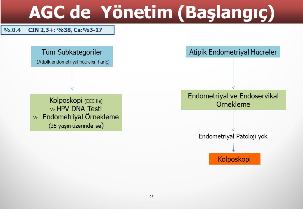 AGC de Yönetim (Başlangıç)