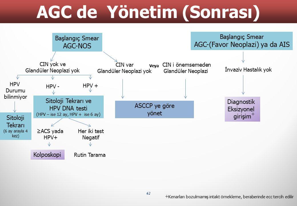 AGC de Yönetim (Sonrası)