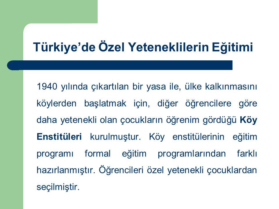 Türkiye'de Özel Yeteneklilerin Eğitimi