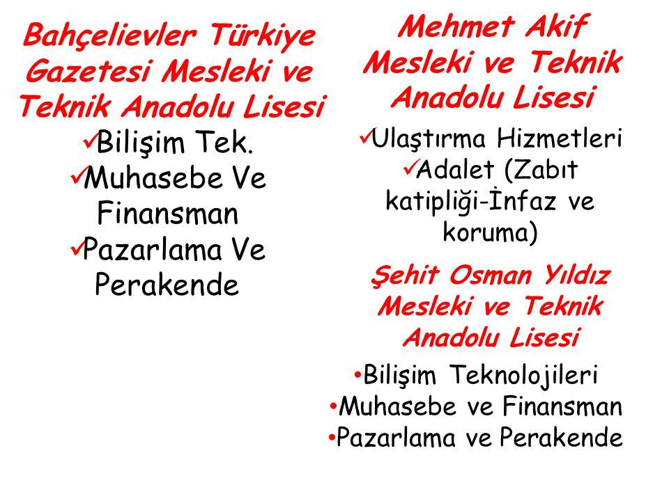 Bahçelievler Türkiye Gazetesi Mesleki ve Teknik Anadolu Lisesi