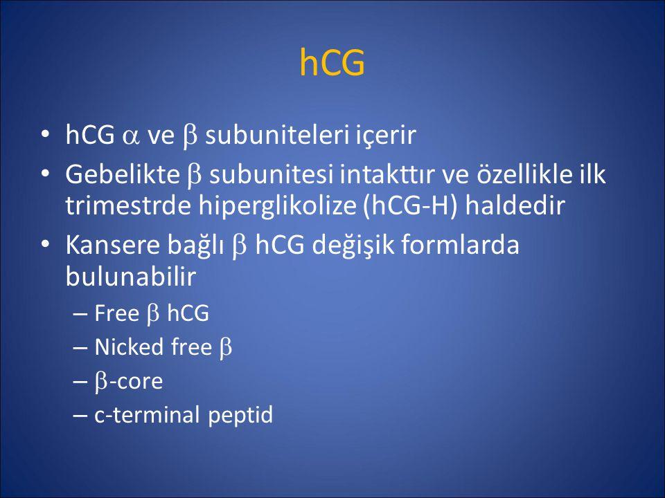 hCG hCG a ve b subuniteleri içerir