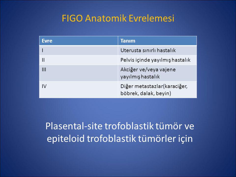 FIGO Anatomik Evrelemesi