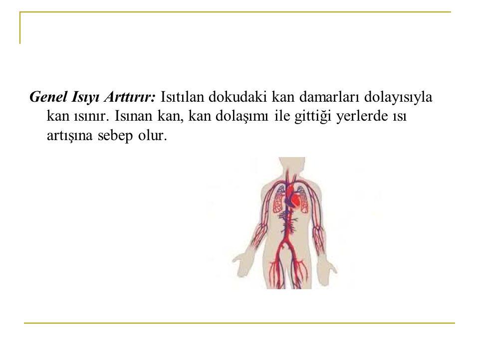 Genel Isıyı Arttırır: Isıtılan dokudaki kan damarları dolayısıyla kan ısınır.