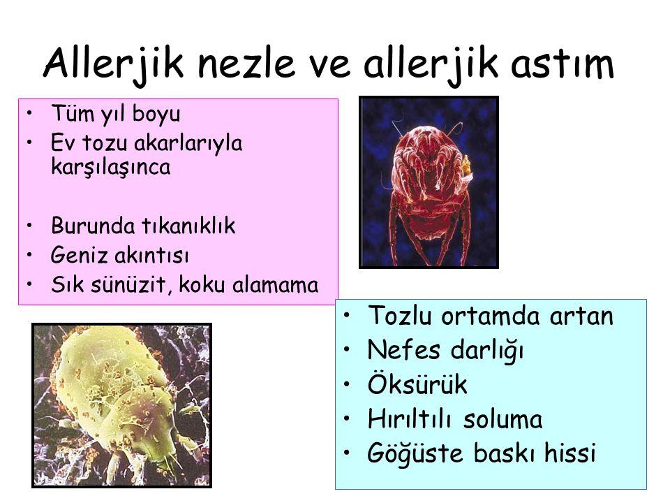 Allerjik nezle ve allerjik astım