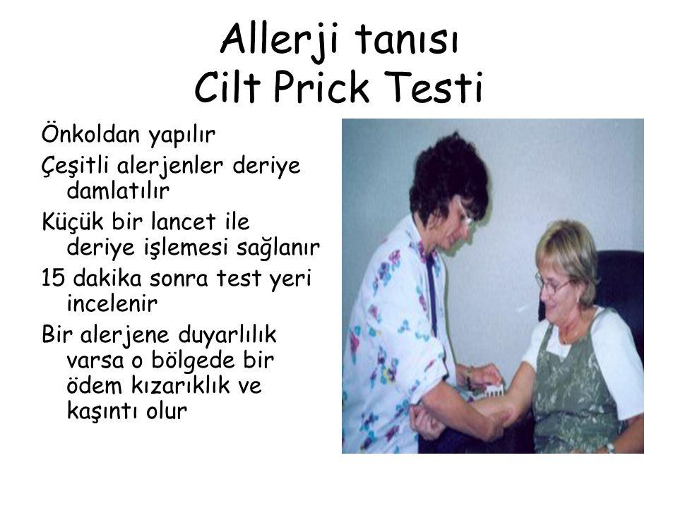 Allerji tanısı Cilt Prick Testi