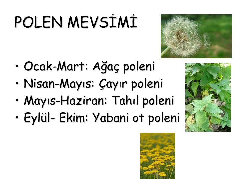POLEN MEVSİMİ Ocak-Mart: Ağaç poleni Nisan-Mayıs: Çayır poleni