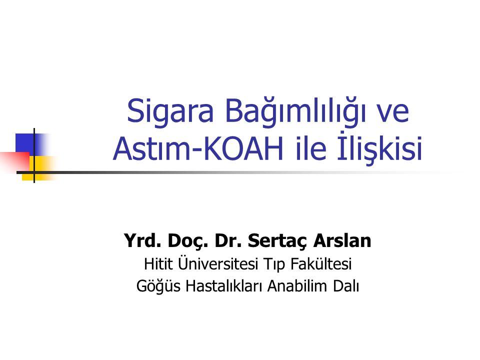 Yrd. Doç. Dr. Sertaç Arslan