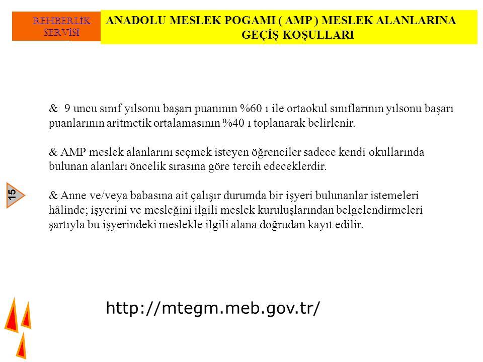 ANADOLU MESLEK POGAMI ( AMP ) MESLEK ALANLARINA