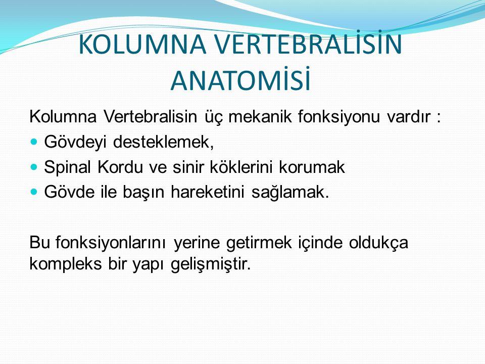 KOLUMNA VERTEBRALİSİN ANATOMİSİ