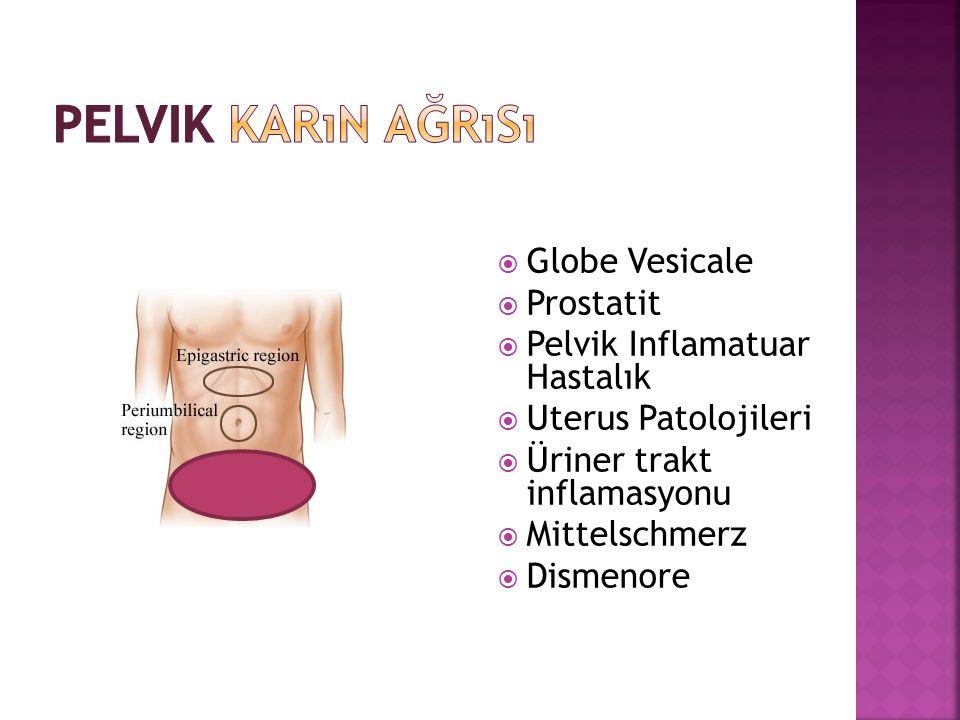 Pelvik Karın Ağrısı Globe Vesicale Prostatit