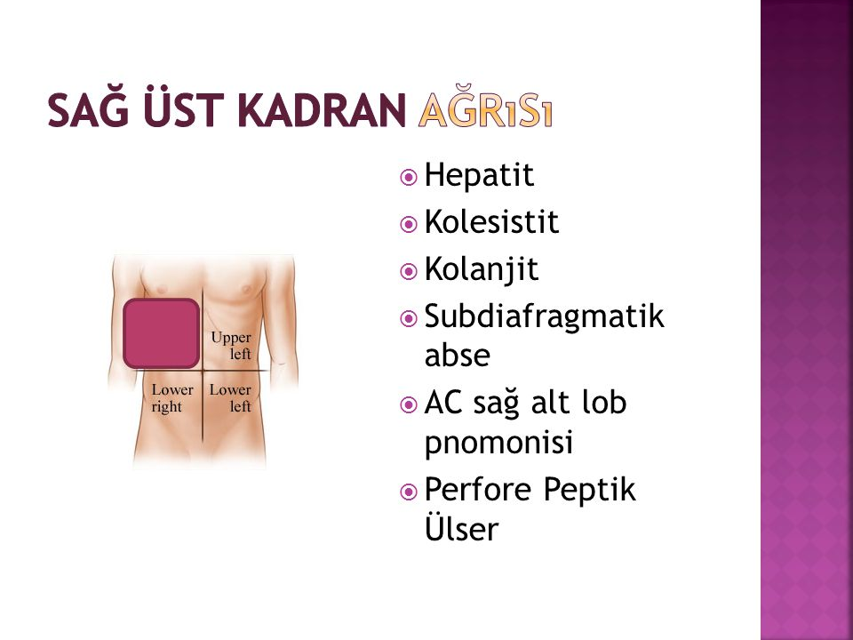 Sağ Üst Kadran Ağrısı Hepatit Kolesistit Kolanjit Subdiafragmatik abse