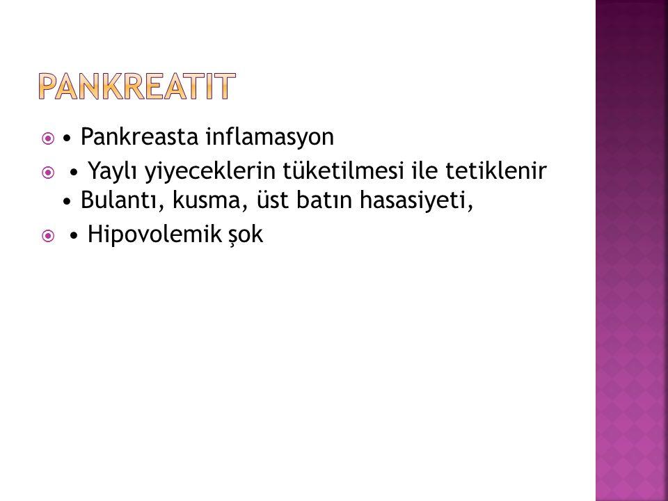 pankreatit • Pankreasta inflamasyon