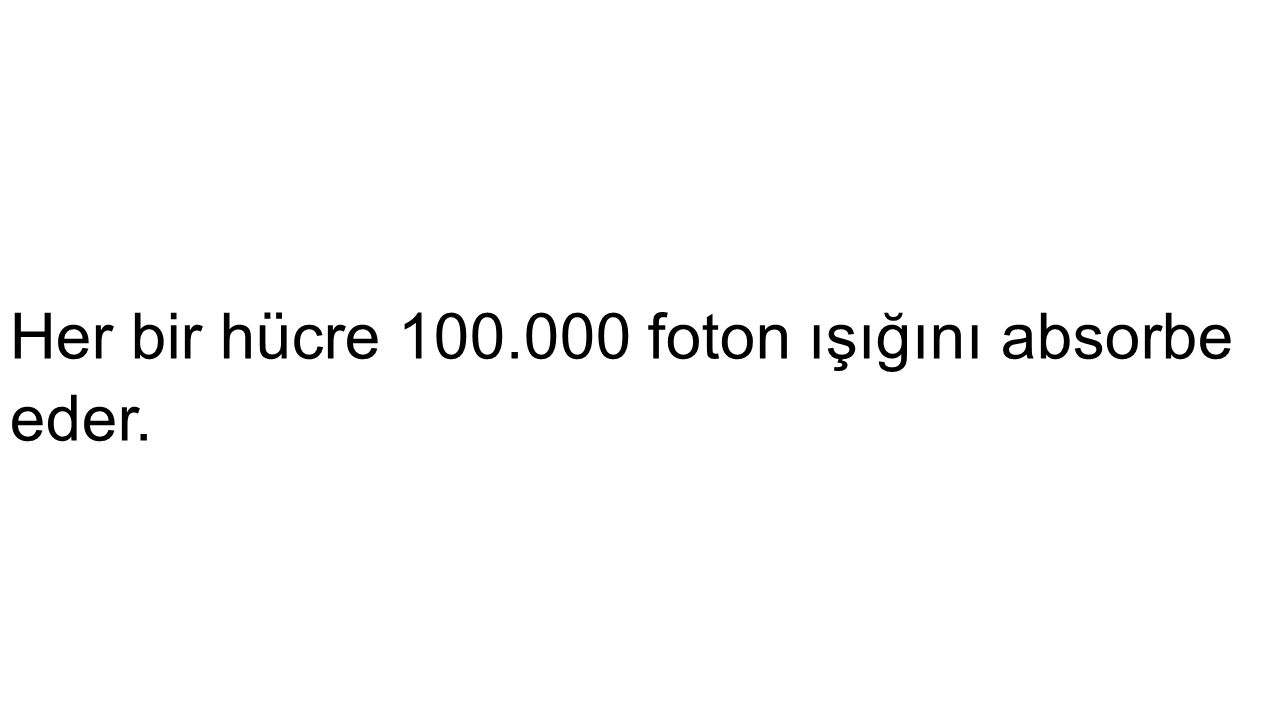 Her bir hücre 100.000 foton ışığını absorbe eder.