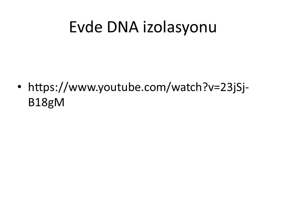 Evde DNA izolasyonu https://www.youtube.com/watch v=23jSj-B18gM