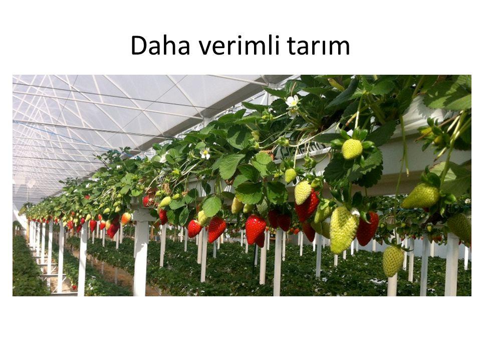 Daha verimli tarım