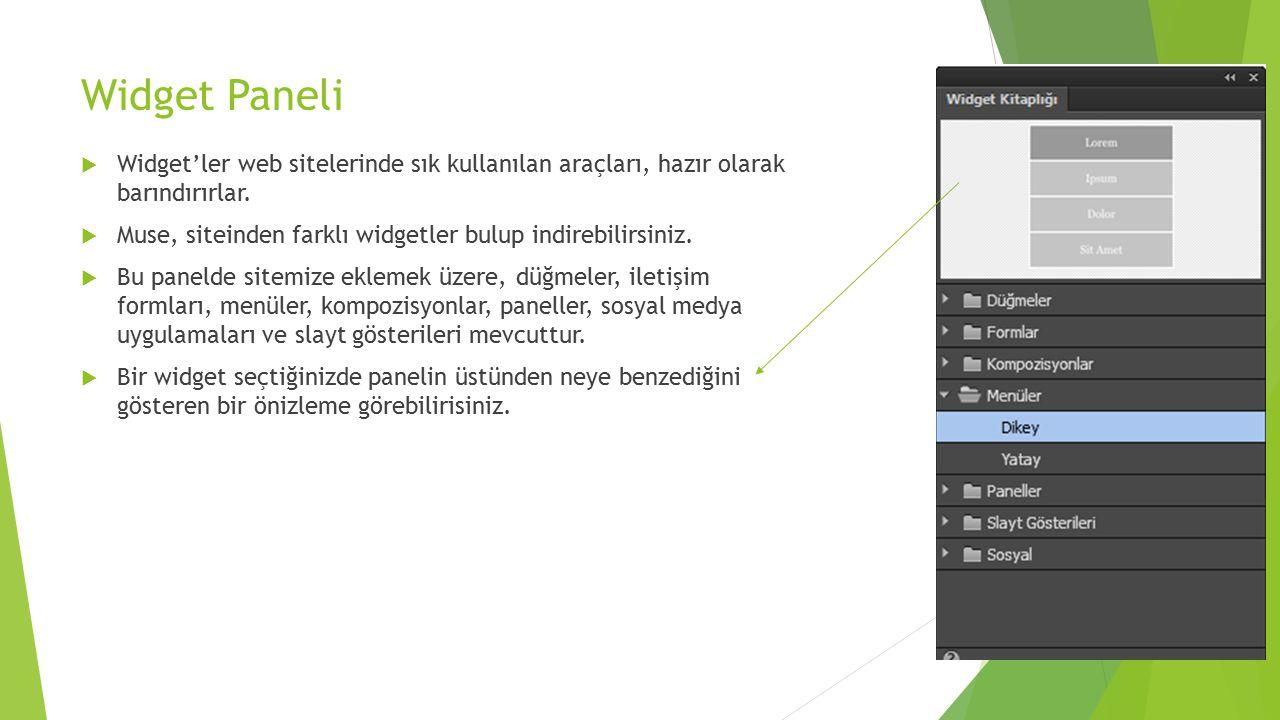 Widget Paneli Widget'ler web sitelerinde sık kullanılan araçları, hazır olarak barındırırlar.