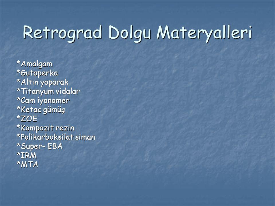 Retrograd Dolgu Materyalleri