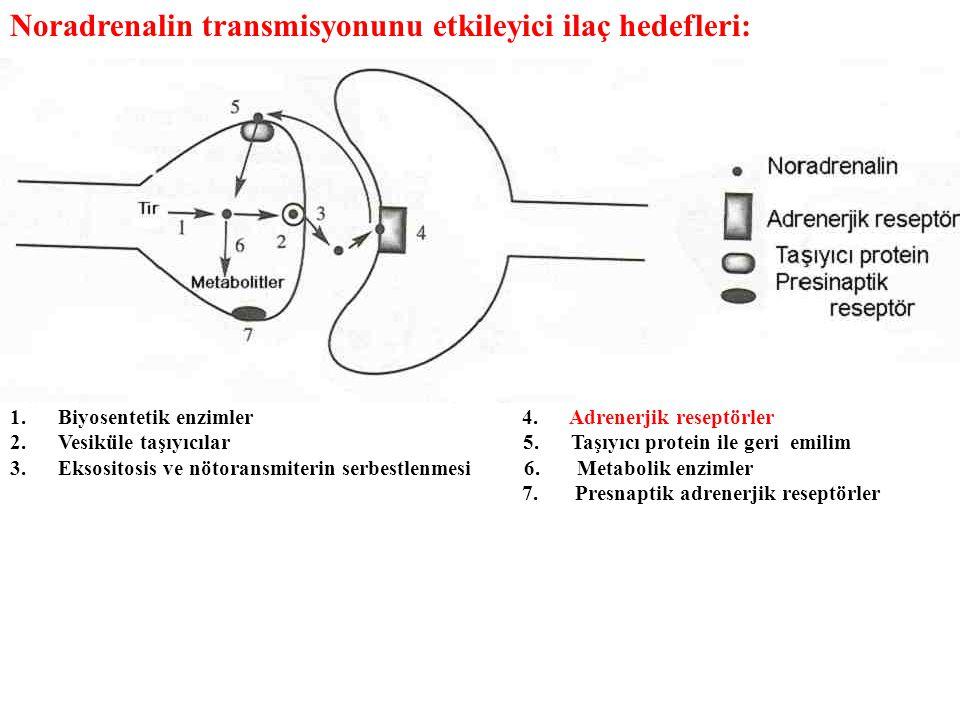 Noradrenalin transmisyonunu etkileyici ilaç hedefleri: