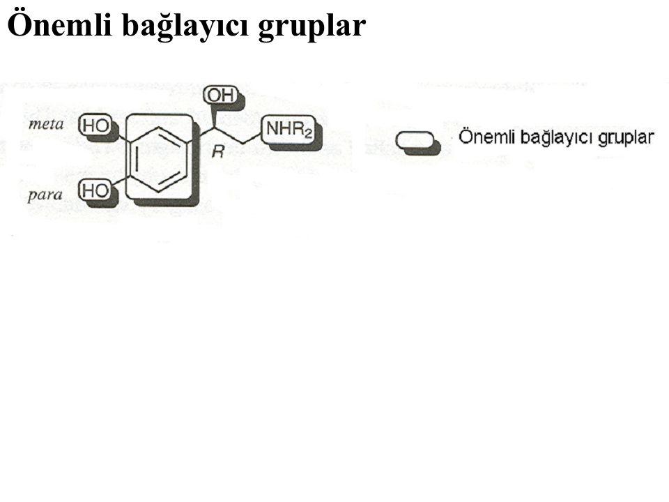 Önemli bağlayıcı gruplar