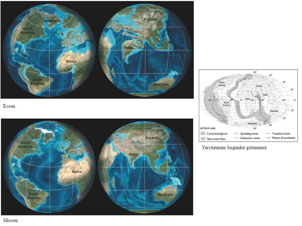 Eosen Yeryüzünün bugünkü görünümü Miosen