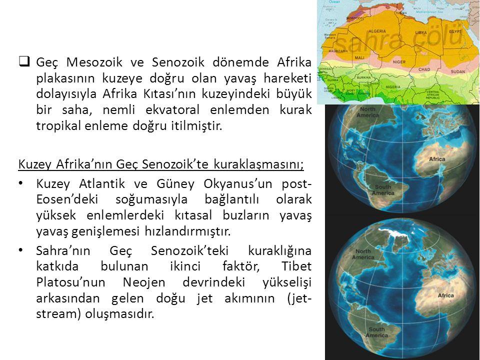 Geç Mesozoik ve Senozoik dönemde Afrika plakasının kuzeye doğru olan yavaş hareketi dolayısıyla Afrika Kıtası'nın kuzeyindeki büyük bir saha, nemli ekvatoral enlemden kurak tropikal enleme doğru itilmiştir.