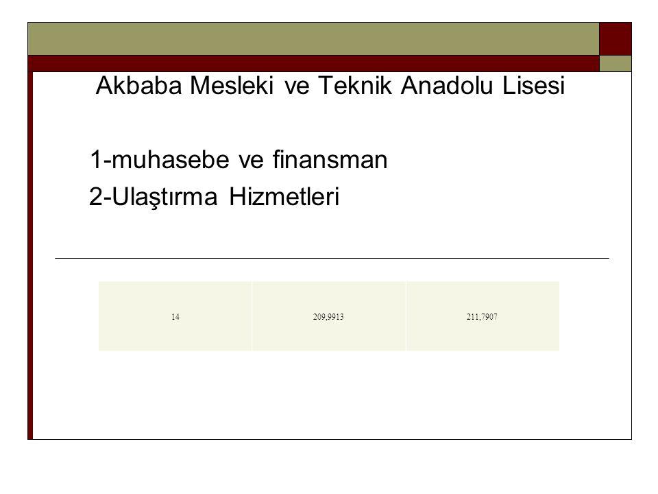Akbaba Mesleki ve Teknik Anadolu Lisesi 1-muhasebe ve finansman