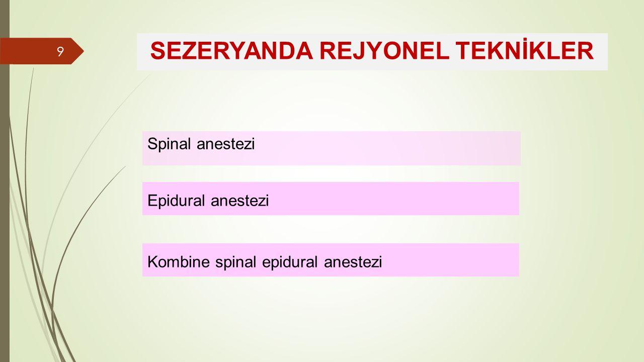 SEZERYANDA REJYONEL TEKNİKLER