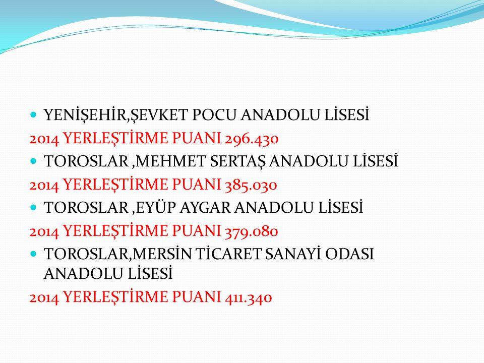 YENİŞEHİR,ŞEVKET POCU ANADOLU LİSESİ