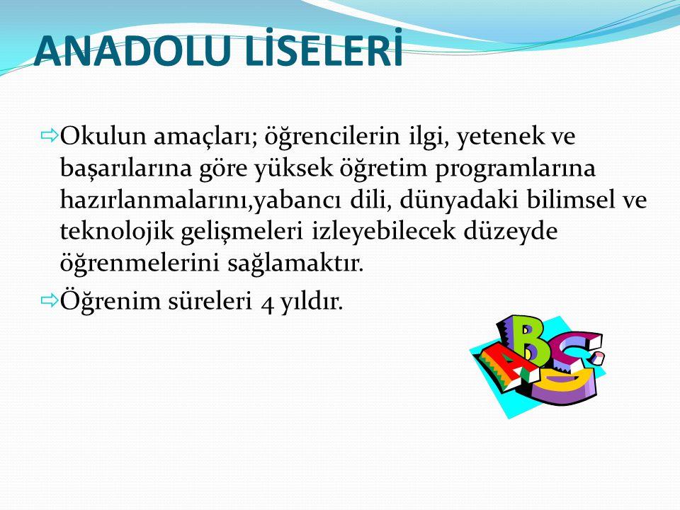 ANADOLU LİSELERİ