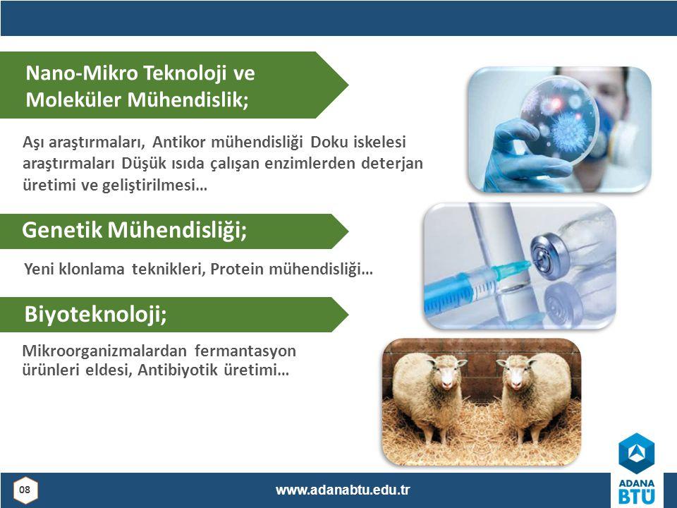Genetik Mühendisliği;