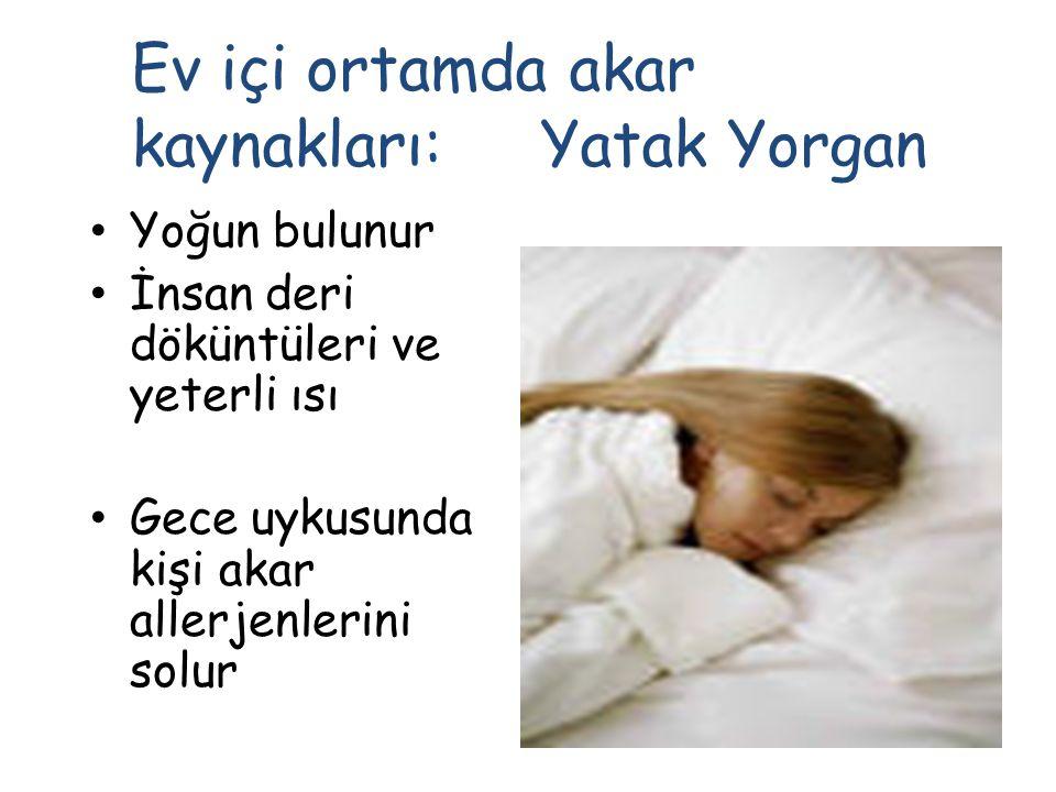 Ev içi ortamda akar kaynakları: Yatak Yorgan