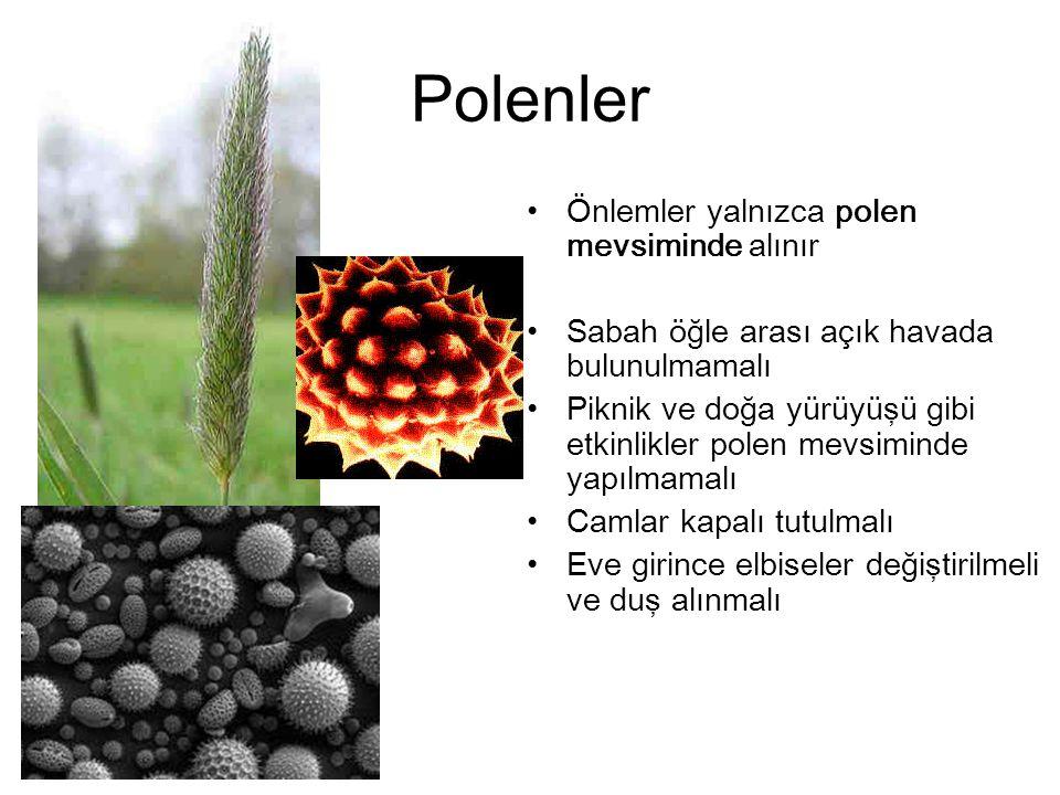 Polenler Önlemler yalnızca polen mevsiminde alınır