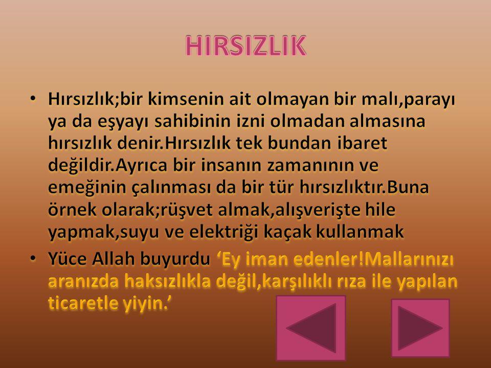 HIRSIZLIK