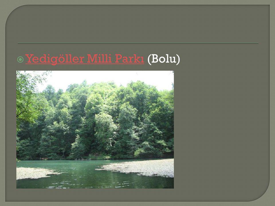 Yedigöller Milli Parkı (Bolu)