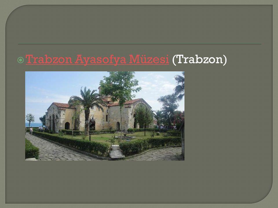Trabzon Ayasofya Müzesi (Trabzon)