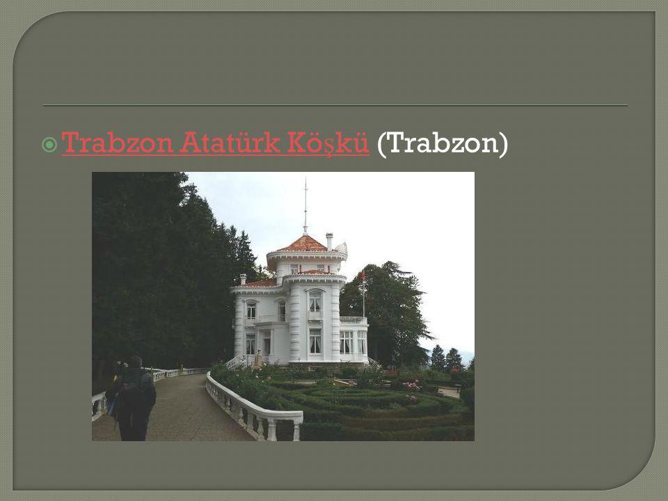 Trabzon Atatürk Köşkü (Trabzon)